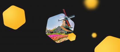 Calendar: Netherlands 2020