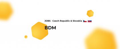 Czech Republic & Slovakia: Business Development Manager